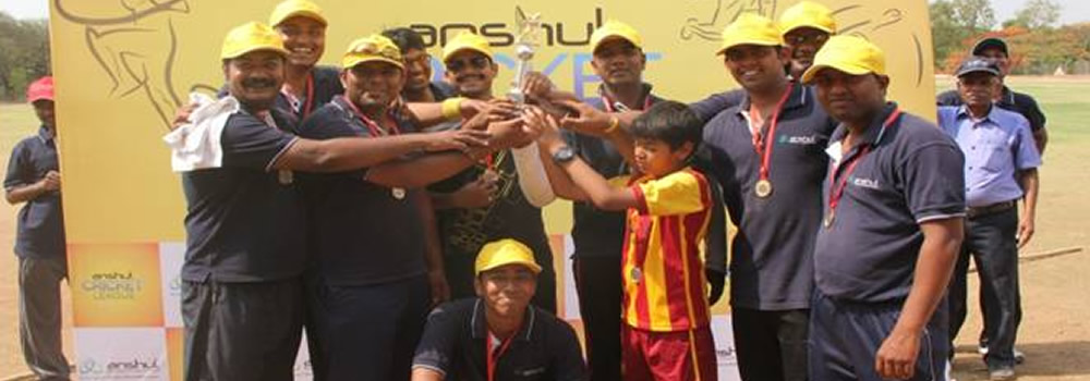anshul group CRICKET LEAGUE