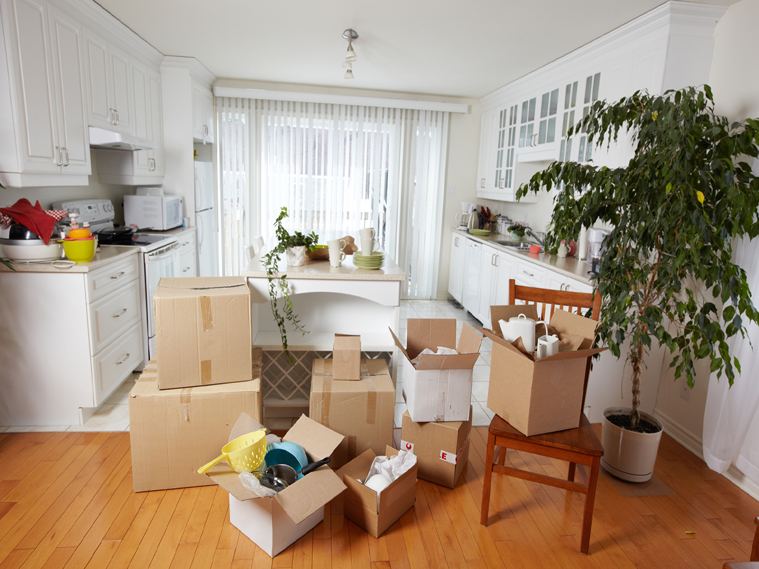 ready-to-move-in-flat
